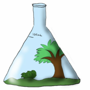 a digital illustration of a glass flask, cone shaped, with nature --a tree and bush-- inside